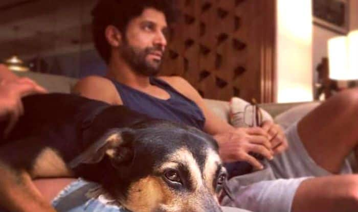 Farhan Akhtar Calls His Dog 'Lucky' And There's a Shibani Dandekar Connection to it – See Photo