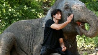 Junglee Box Office First Weekend: Vidyut Jammwal-Chuck Russell's Action Film Earns Rs 13.85 cr
