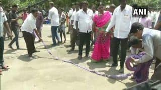 Tamil Nadu Lok Sabha Election Results 2019: Celebrations Outside DMK's Chennai Headquarters as Party Leads in 22 Seats