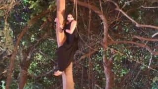 Bhojpuri Hottie Monalisa Looks Her Sexiest Best as She Performs Action Sequence on The Show Nazar - Watch Video
