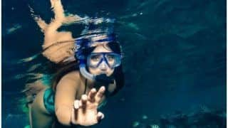 Ileana D'Cruz' Underwater Picture Sets Fans Hearts Aflutter, Reveals 'Favourite Fiji Things' in Viral Post