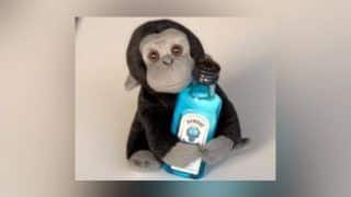Elon Musk Changes His Twitter Profile Picture to Alcoholic Monkey