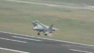 Pigeons Huge Concern For IAF, Pose Threat to Combat Aircraft at Future Rafale Base
