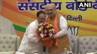 JP Nadda Appointed BJP Working President For 6 Months; Amit Shah to Remain Party's National Chief