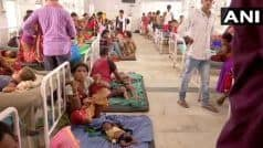 Bihar Health Crisis: 121 Children Dead Due to Encephalitis in Muzaffarpur Alone