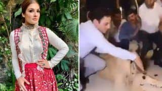 Rot in Hell! Raveena Tandon Slams Kurdish Man For Smashing Cake on Lion's Face After Video Goes Viral
