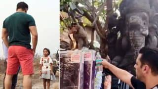Watch: Salman Khan Feeds Monkey in The Viral Video And It Will Crack You up