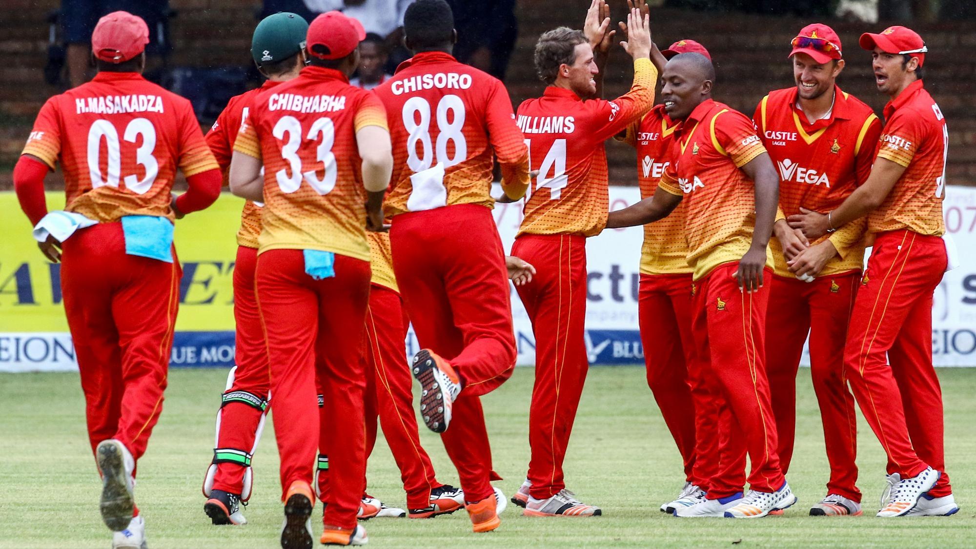 Zimbabwe Cricket Team Zoom Background 3
