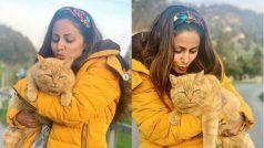 पीली बिल्ली के साथ पीली हुईं हिना खान, Switzerland में जैसे पतझड़ आया हो..