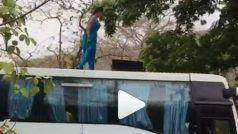 Video: क्यों तेज़ चलती हुई बस पर चढ़ गई मोनालिसा, मरना चाहती हैं या किसी को मारना?