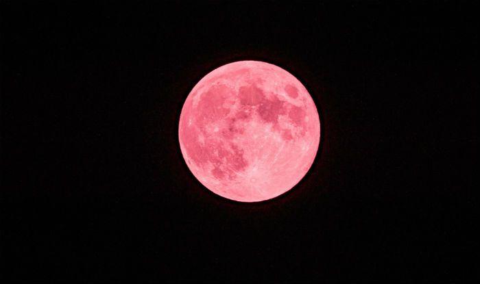 bulan stroberi
