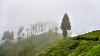 Takdah: A Perfect Hilly Retreat For Monsoons in Bengal