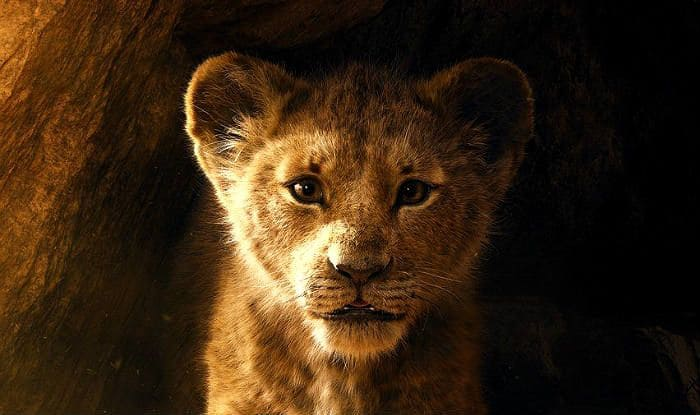 Will The Lion King Reach Rs 50 Crore at Box Office in Its
