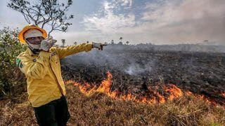 Brazil Bans Use of Fire to Clear Land For 60 Days Amid Crisis