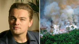 Leonardo DiCaprio Raises Concerns Over Amazon Rainforest Fire, Bollywood Trends #SaveTheAmazon