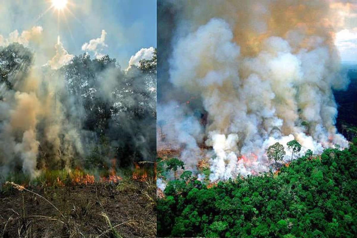 amazon rain-forest fire