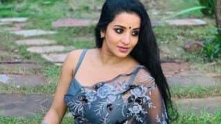 Bhojpuri Hottie Monalisa Looks Breathtaking Gorgeous in a Sexy And Sensuous Grey Netted Saree