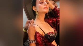 Bigg Boss season 13 Premiere: Ameesha Patel to Spice up The Bigg Boss House