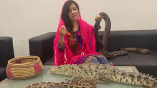 Pakistani Singer Fined For Threatening PM Modi With Reptiles, Crocodiles on Kashmir Issue