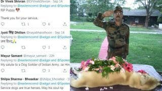 RIP, Dutch! Indian Army Pays Tribute to Their Brave Service Dog, Twitterati go Emotional - Viral Pics