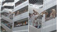 राज्य सचिवालय में दो शिक्षकों ने की सुसाइड की कोशिश, बिल्डिंग से कूदे, जाल पर गिरे, ऐसा हुआ हाल