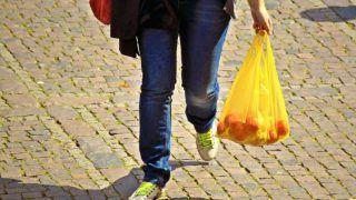 Delhi: Trader 'Violates' Plastic Rule, Fined Rs 2 Lakh
