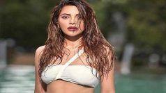 White Bikini में शमा सिकंदर ने कराया फोटोशूट, 'सेक्सोहॉलिक' में बोल्ड सीन्स से हुई हैं फेमस...