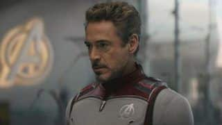 Robert Downey Jr. Turns Down Oscar Campaign For Iron Man, Says 'Let's Not'