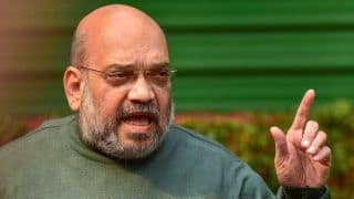 New BJP President Will Be Appointed By December, Announces Amit Shah