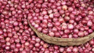 Onion Prices Ease in Delhi Amid Increase in Local Produce Arrivals