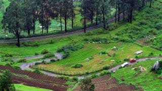 Heading To Ooty For a Mini Vacation? Don't Forget to Buy These Popular Things