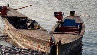 गुजरात: बीएसएफ ने 'हरामी नाला' से पांच पाकिस्तानी नौकाएं जब्त कीं