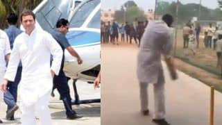 After Addressing Rally in Haryana, Rahul Gandhi Plays Cricket With Local Boys | Watch Viral Video