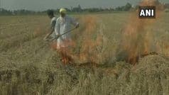 Punjab: Farmers of Bhamme Khurd Village Broadcast Stubble Burning on Social Media Despite Ban
