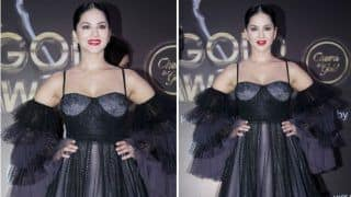 Sunny Leone Personifies Hotness in Black-grey Gown For Gold Awards 2019, Grabs 'Icon of The Year' Award