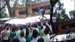रुपयों से भरा झोला छीनकर भागा बंदर, पेड़ पर चढ़कर कुछ इस तरह उड़ाए नोट, देखें VIDEO