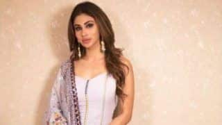 Mouni Roy Looks Breathtaking Gorgeous in Mauve Sharara And Long Earrings, Check Hot Pics