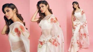 Mouni Roy's Sheer White Saree Look in Latest Instagram Pictures is a Hit - Check Viral Photos