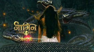 Ekta Kapoor's Naagin 4 to go Off Air Post Lockdown to Make Way For Naagin 5? Here is All You Need to Know
