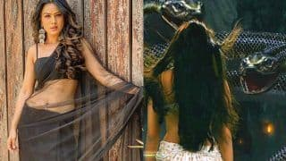 Nia Sharma is The New Naagin of TV, Ekta Kapoor Makes Big Announcement Regarding Naagin 4