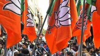 UP Bypoll Results 2019: BJP Bags 7 Seats, Samajwadi Party Wins 3