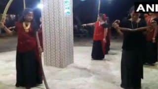 Viral Video: Five Women Perform Garba With Snakes in Gujarat, Arrested
