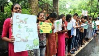 Over 60 Per Cent of Trees Transplanted by Mumbai Metro at Aarey Already Dead