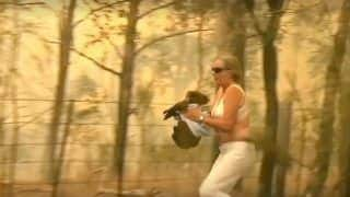 Watch | Woman Hailed As a Hero After She Risks Her Life to Rescue a Koala from Wildfire
