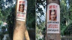 'He Was Last Spotted Enjoying Jalebis', 'Missing' Posters of Gambhir Emerge in Delhi After he Skips Pollution Meet