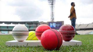 INDvBAN: भारत-बांग्लादेश Day-Night टेस्ट मैच से पहले ईडन गार्डंस की पिच के बारे में क्यूरटेर ने दी ये जानकारी