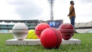 What is the Price of Pink Ball in India And From Where Can You Purchase One?