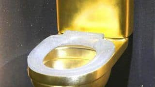 You Will Think Twice Before Using This Toilet! Watch Why