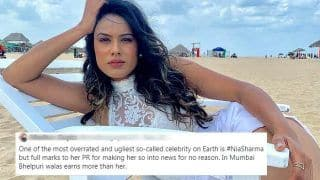 Nia Sharma Called 'Ugliest Celebrity' on Twitter, She Gives a Befitting Reply to Troll