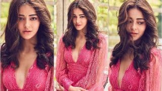 Ananya Panday's Sizzling Pictures in Sheer Dress With Plunging Neckline Paint Our Monday Blues Pink